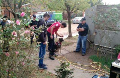 Los perros del K9 buscan pruebas en la casa de los Benítez