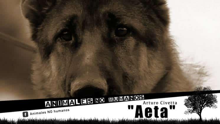 ANH COVER FACEBOOCK CAP 22 AETA00