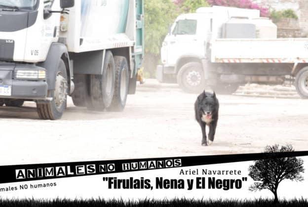 ANH COVER FACEBOOCK CAP 25 FIRULAIS NENEA Y EL NEGRO0