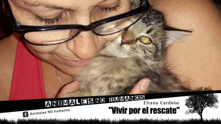 ANH COVER FACEBOOCK CAP 26 VIVIR POR EL RESCATE0
