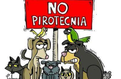 Animales NO Humanos se suma a la campaña NO A LA PIROTECNIA: Envíanos tu foto
