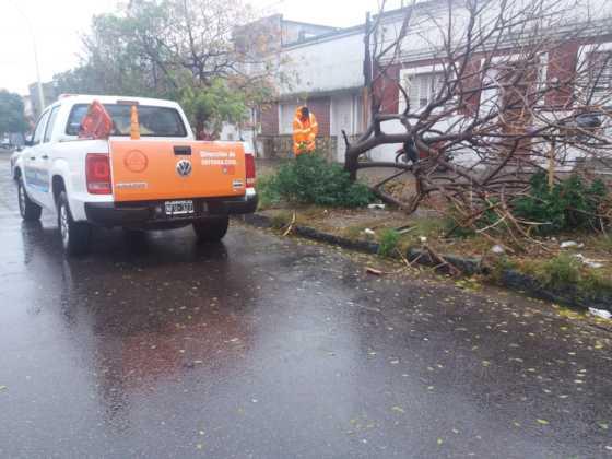 Un electrocutado, voladura de techos, árboles y familias evacuadas