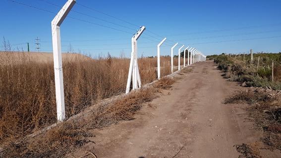 Vandalismo en la Planta Depuradora de ABSA