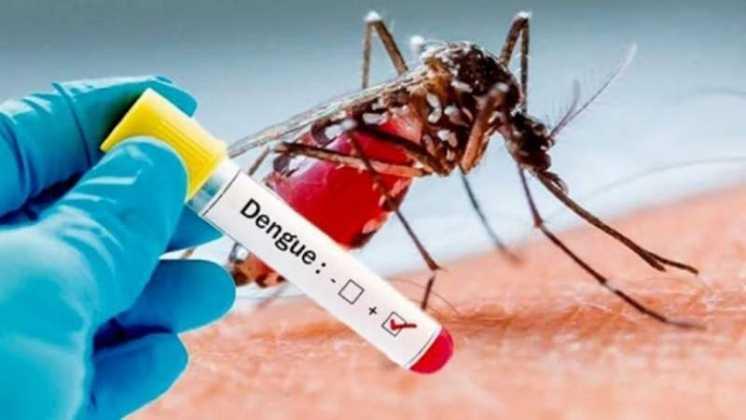 Casos de dengue en la provincia crecieron 12% en una semana