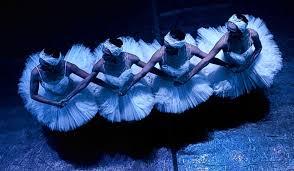 "Llega a la pantalla de Canal Siete, la magia de ""El lago de los cisnes"""