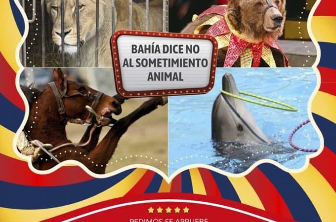Buscan prohibir espectáculos con animales en Bahía Blanca