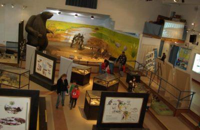 El Museo Municipal Carlos Darwin abrirá sus puertas el 20 de septiembre
